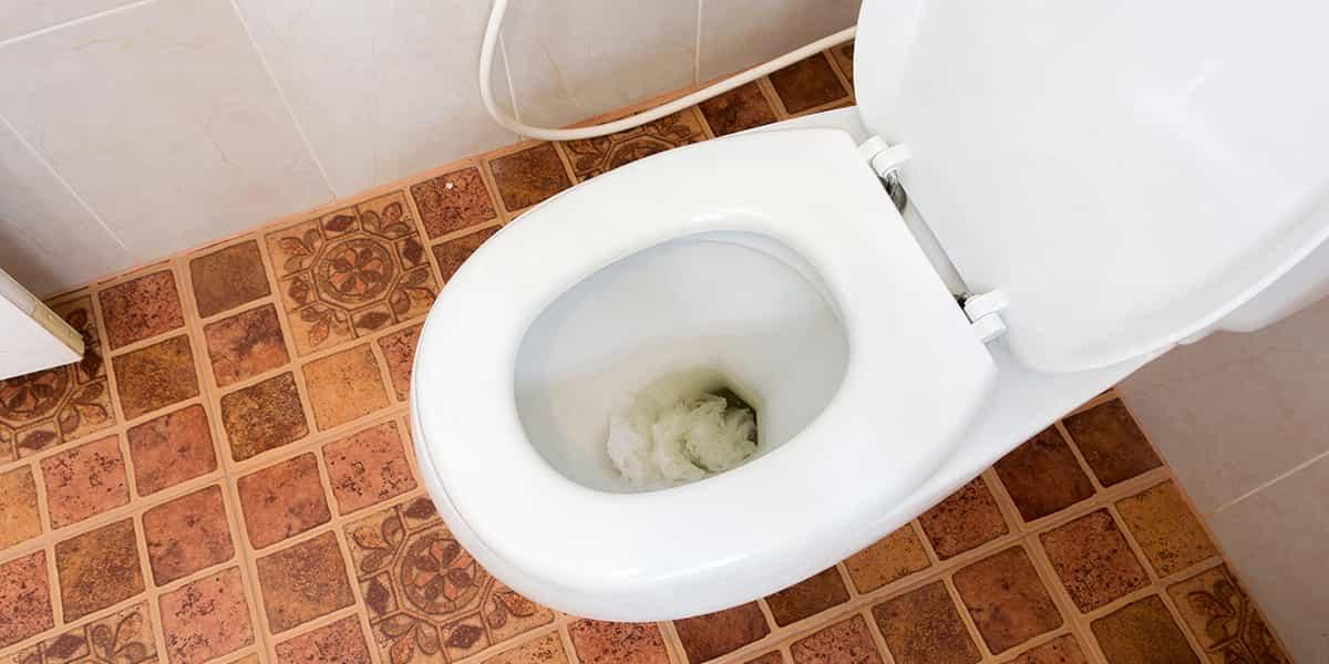 Mon wc est bouché et fait du bruit - Rollot (80500)